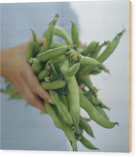 Green Beans Wood Print by David Munns
