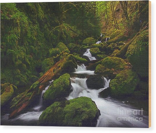 Green Canyon Cascades Wood Print by Diane Kurtz