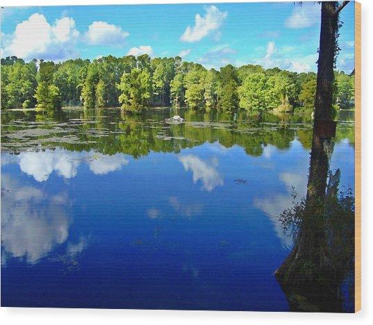Green Field Lake Wood Print