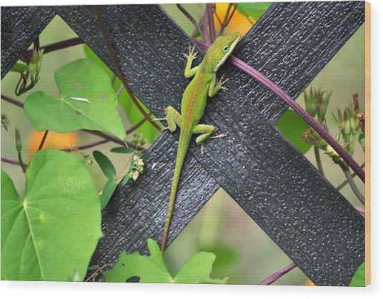 Green Lizard On Fence Wood Print by Terri Albertson