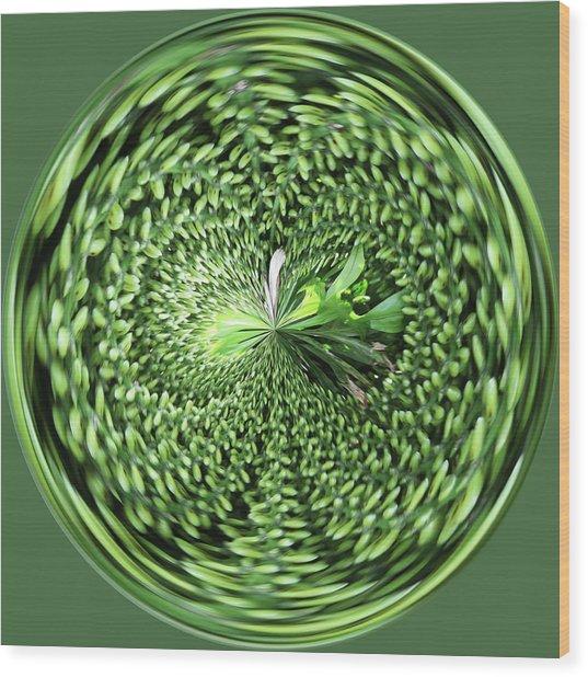 Green Orb Wood Print
