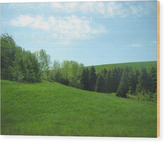 Greener Pastures Wood Print by Harry Wojahn