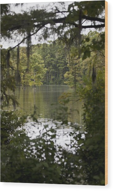 Greenfield Lake Wood Print by Christina Durity