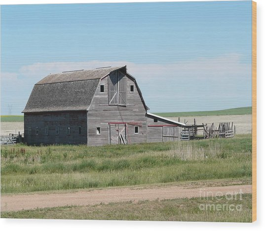 Grey Barn Wood Print by Bobbylee Farrier
