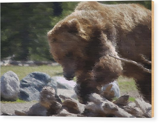 Grizz Dinner Wood Print by Kevin Bone