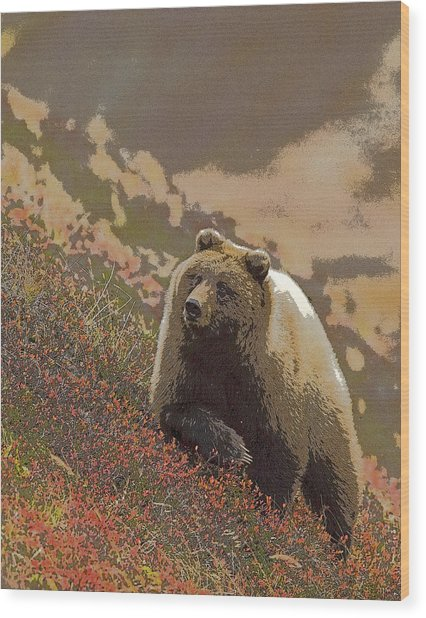 Grizzly Bear In Berries- Abstract Wood Print