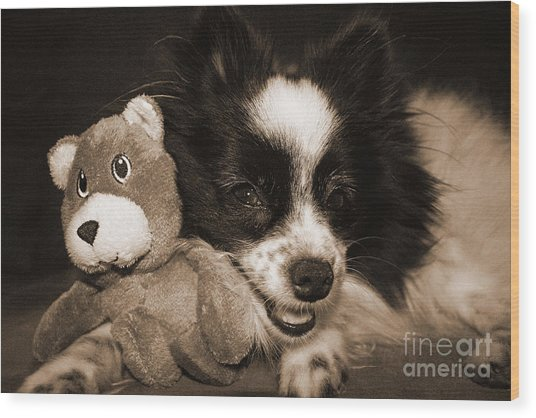 Gypsy With Billy Beaver Wood Print