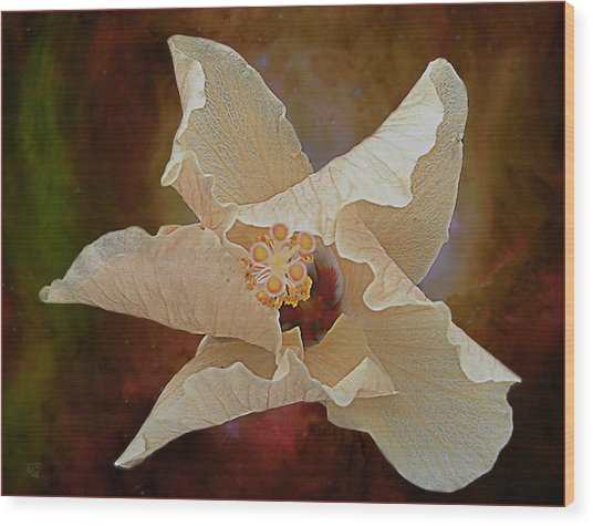 Hibiscus Floats In Space Wood Print