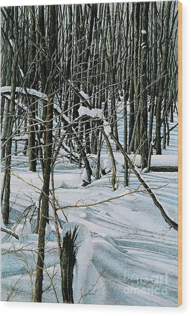 Haliburton Ontario Wood Print