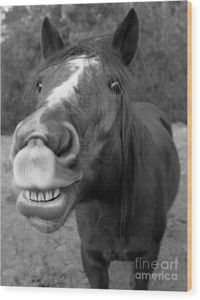 Happy Horse Wood Print by Christean Ramage