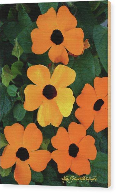 Happy Orange Wood Print by Ruth Bodycott