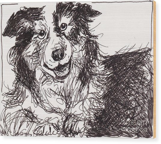 Happy The Boarder Collie Wood Print by Michele Hollister - for Nancy Asbell
