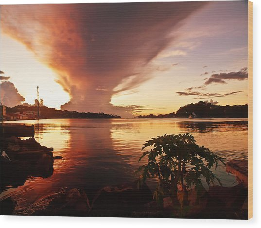 Harbour Sunset Wood Print