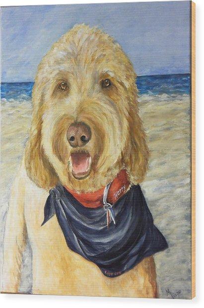 Harry At The Beach Wood Print