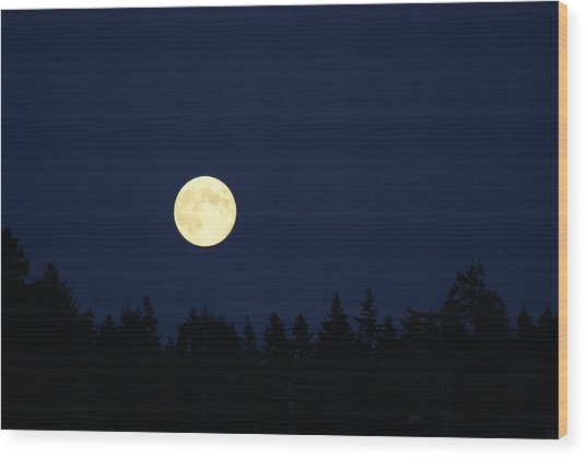 Harvest Moon Wood Print by Jerry Cahill