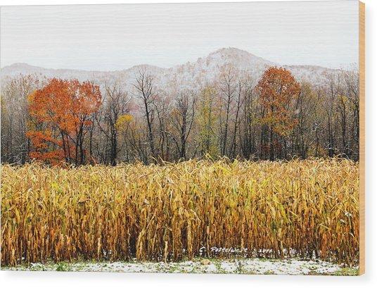 Harvest Snow Wood Print by Carolyn Postelwait