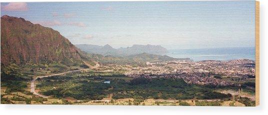 Hawaii Overlook Wood Print