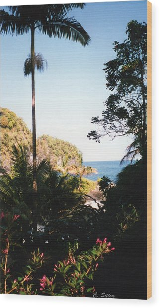 Hawaii Palm And Surf Wood Print