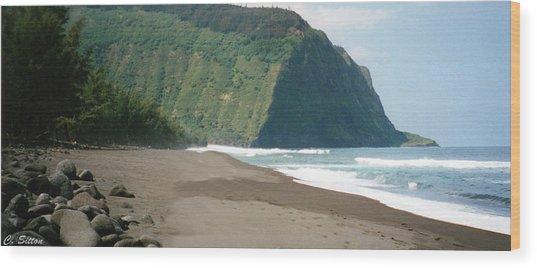 Hawaii Shore Wood Print