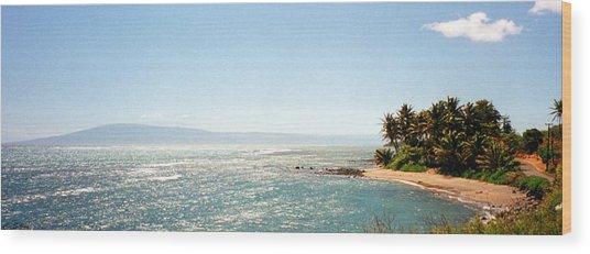 Hawaiian Coastal View Wood Print