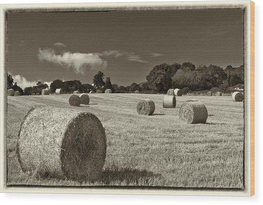 Hay Bales In Sepia Wood Print
