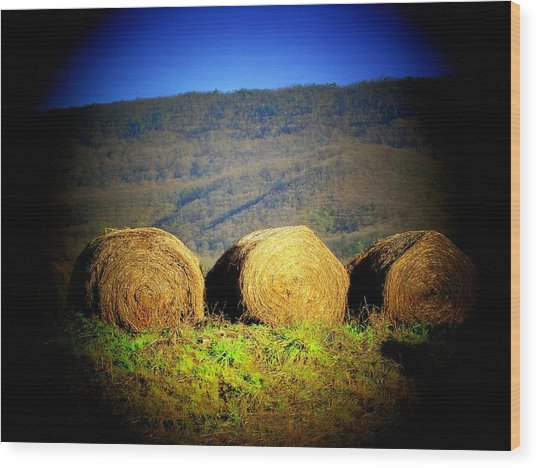 Hay Rolls On Mountain Wood Print by Michael L Kimble