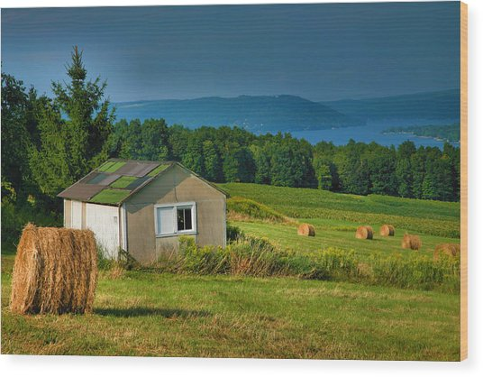 Hayfield And Lake II Wood Print by Steven Ainsworth