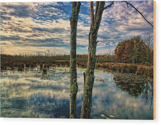 Hd Lakeview Wood Print