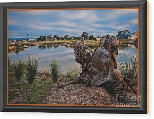 Hdr-wetlands Wood Print