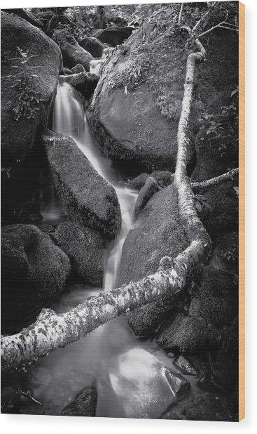 Headwaters Wood Print