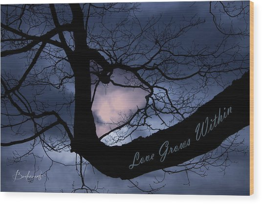 Heart In Tree Love Grows Within  Wood Print