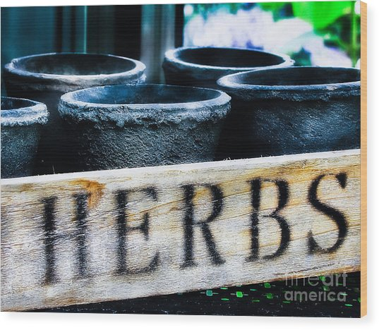 Herb Pots Wood Print by Colleen Kammerer