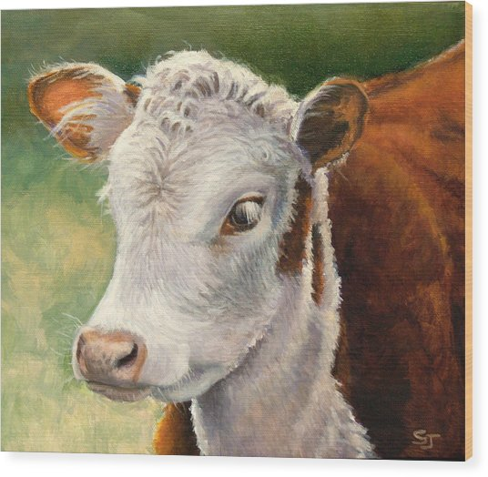Herford Calf  Wood Print