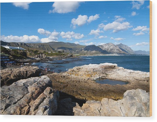 Hermanus Coastline Wood Print