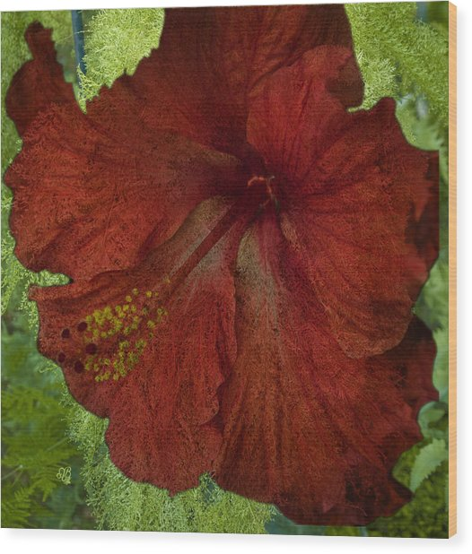 Hibiscus Plus Fern Wood Print