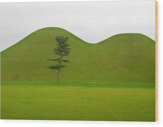 Hill Tombs And Tree Korea Wood Print by Gabor Pozsgai