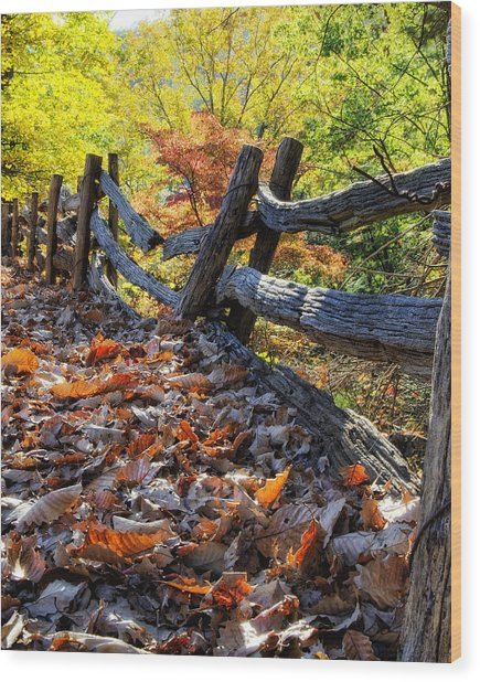 Holding Back The Colors Of Fall Wood Print