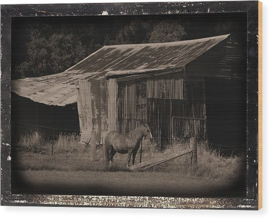 Horse And Old Barn Wood Print