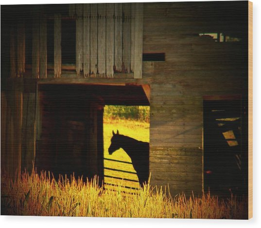 Horse In The Barn Wood Print by Joyce Kimble Smith