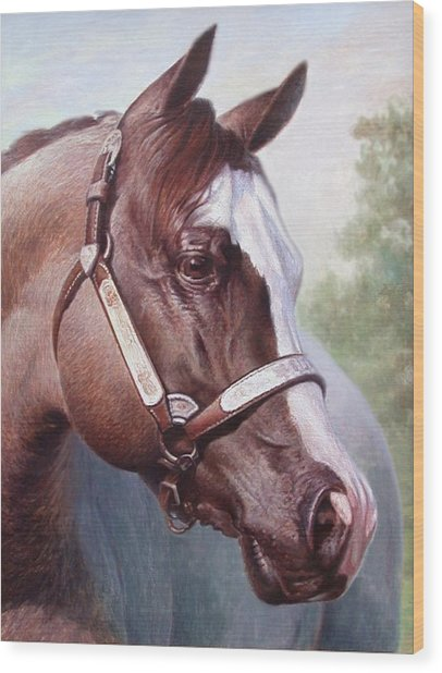 Horse Portrait 2 Wood Print