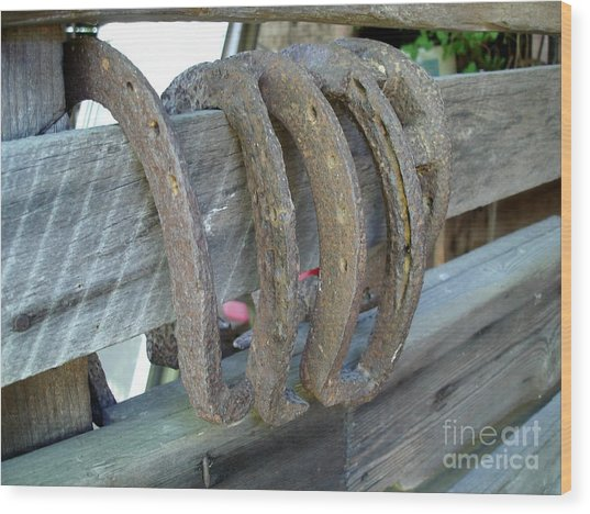 Horse Shoes Wood Print