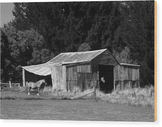 Horses And Old Barn Wood Print