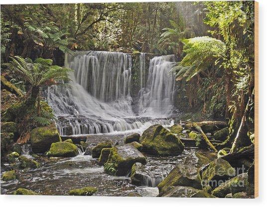 Horseshoe Falls Wood Print by Raoul Madden