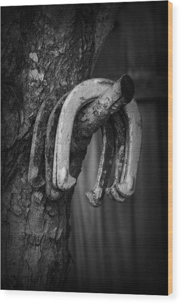 Horseshoes Wood Print