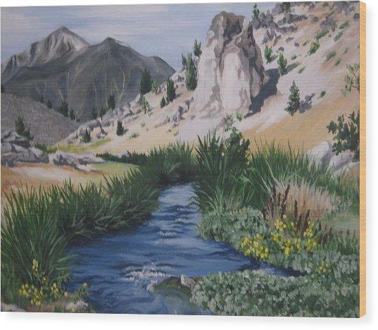 Hot Creek Wood Print