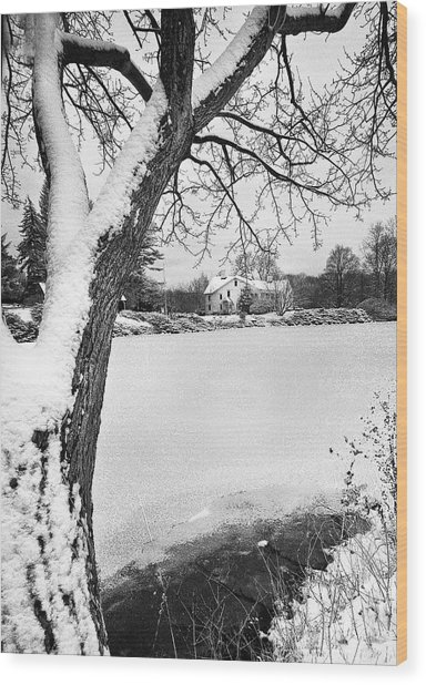 House On Frozen Lake Wood Print by Ercole Gaudioso