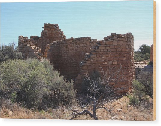 Hovenweep House Wood Print by Cynthia Cox Cottam