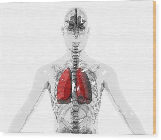 Human Lungs Wood Print by Christian Darkin