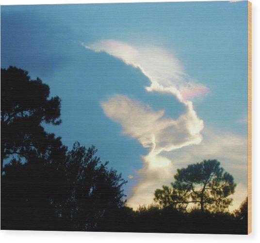 Hungry Cloud Wood Print by Juliana  Blessington