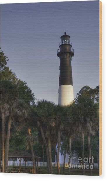 Hunting Island Light Wood Print